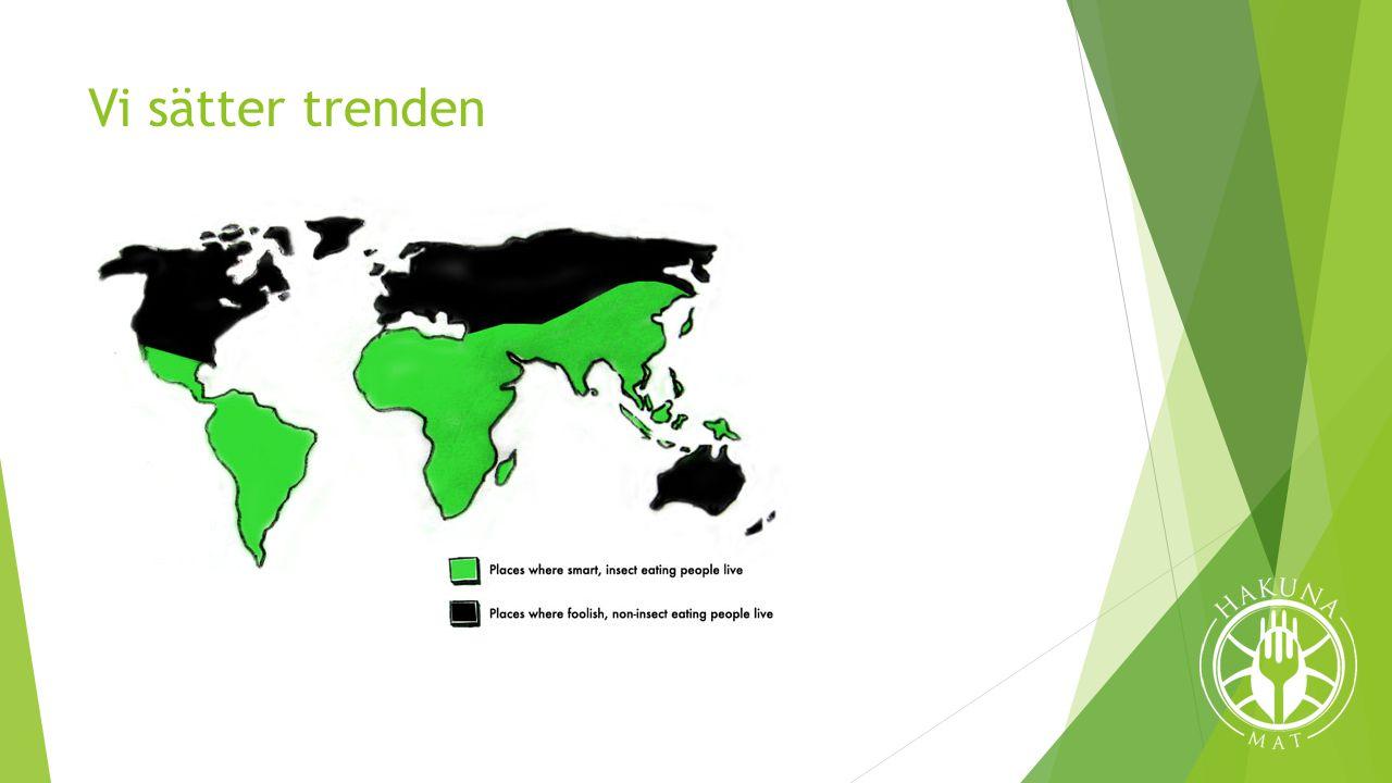 Vår vision  Informera  Importera delikatesser  Inkorporera i svensk mat  Utveckla produkter