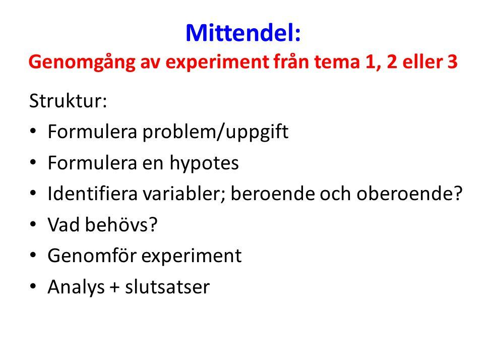 Mittendel: Genomgång av experiment från tema 1, 2 eller 3 Struktur: Formulera problem/uppgift Formulera en hypotes Identifiera variabler; beroende och