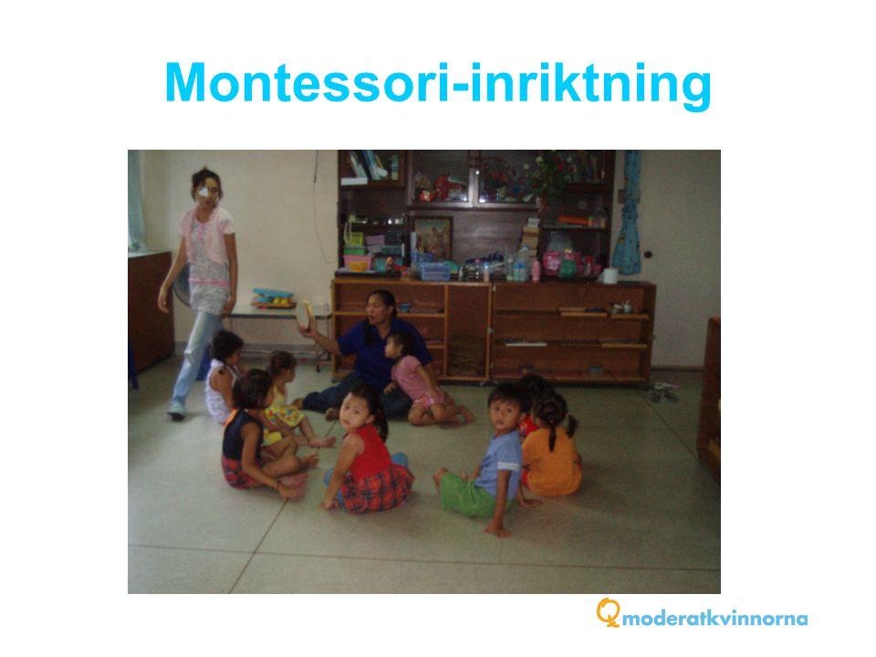 Montessori-inriktning