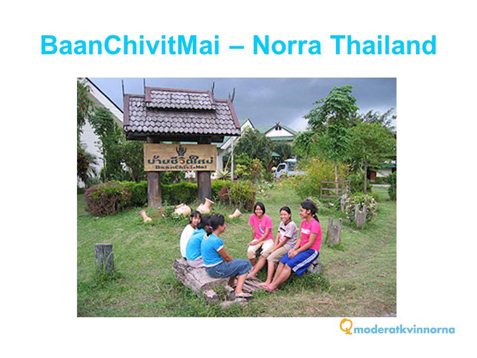 BaanChivitMai – Norra Thailand