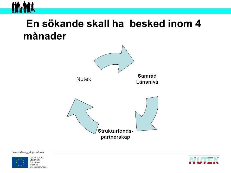 Systemet för utvärdering av de regionala strukturfondsprogrammen Syntes ÖK P.