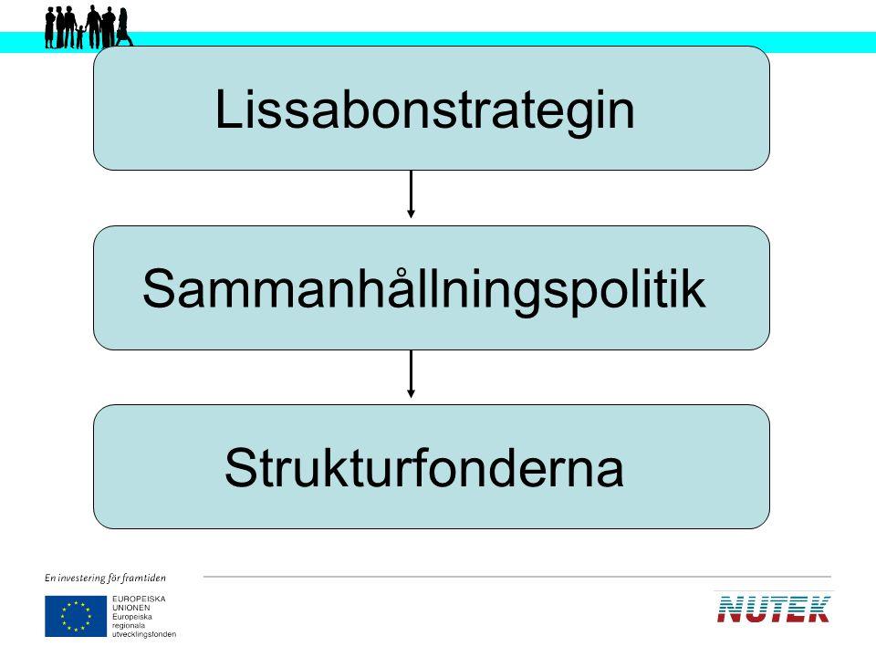 Viktiga förutsättningar för ett lyckat genomförande av strukturfondsarbetet i Sverige Programmen ska bidra till uppfyllandet av målen i Lissabonstrategin Programmen ska ha ett tydligt näringslivsperspektiv Programmen ska prioritera hållbar utveckling Programöverskridande samarbeten ska uppmuntras