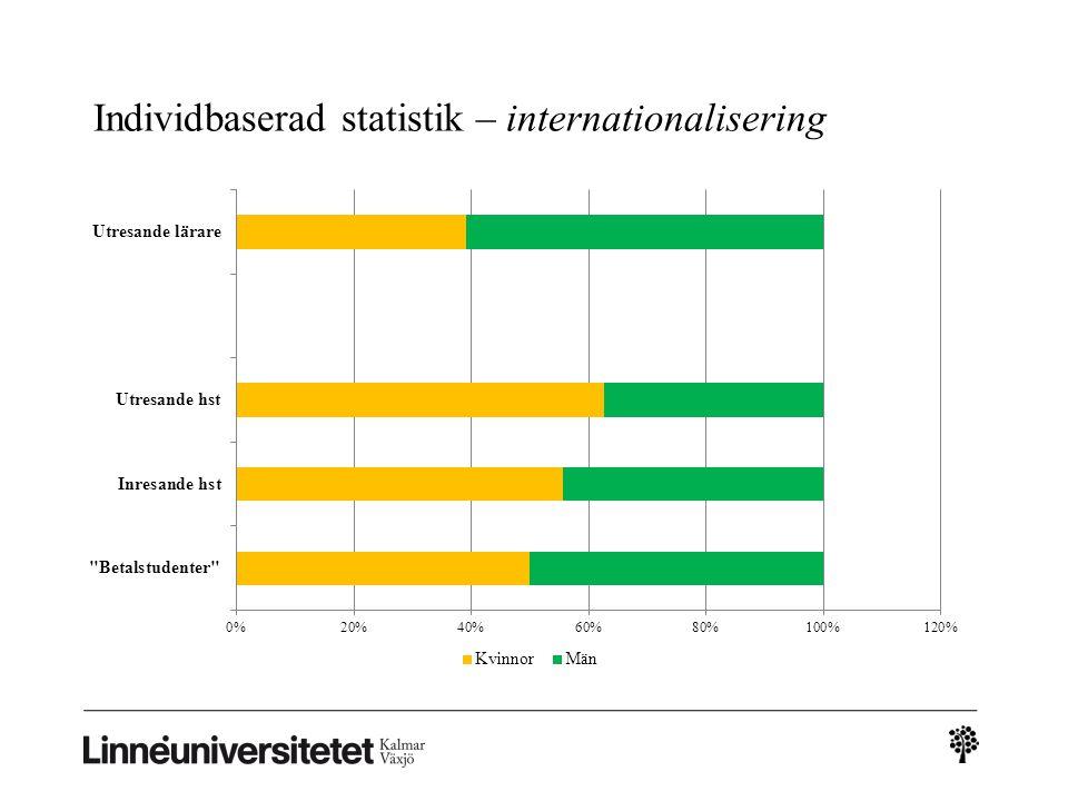 Individbaserad statistik – internationalisering