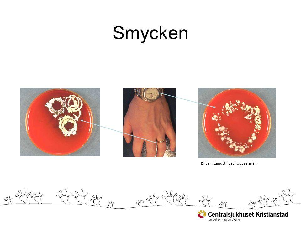 Smycken Bilder: Landstinget i Uppsala län