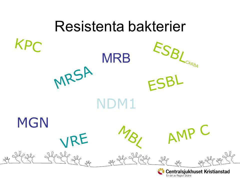 Resistenta bakterier KPC MBL ESBL NDM1 VRE MGN MRSA MRB ESBL CARBA AMP C
