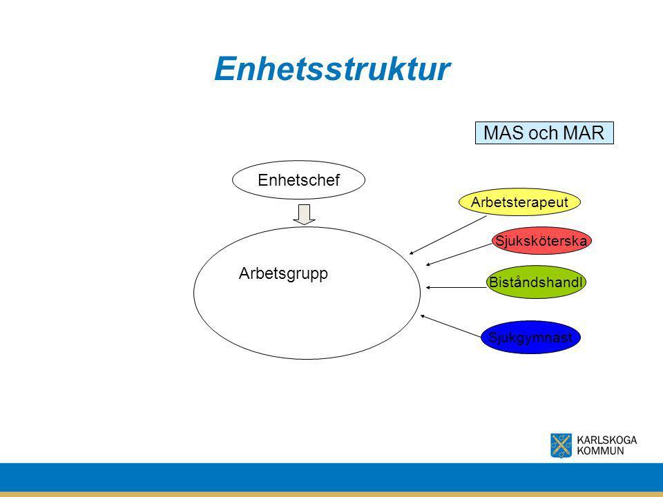 Enhetsstruktur Enhetschef Sjuksköterska Biståndshandl Arbetsterapeut MAS och MAR Sjukgymnast Arbetsgrupp