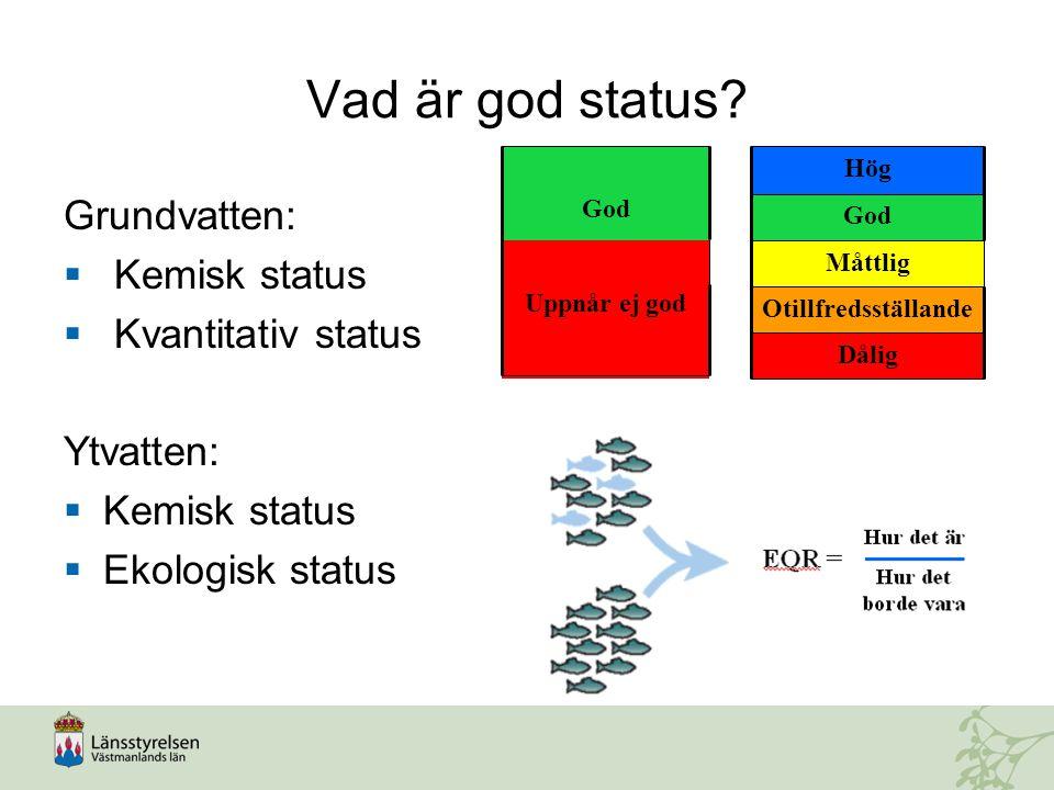 Vad är god status? Grundvatten:  Kemisk status  Kvantitativ status Ytvatten:  Kemisk status  Ekologisk status Dålig Otillfredsställande Måttlig Go