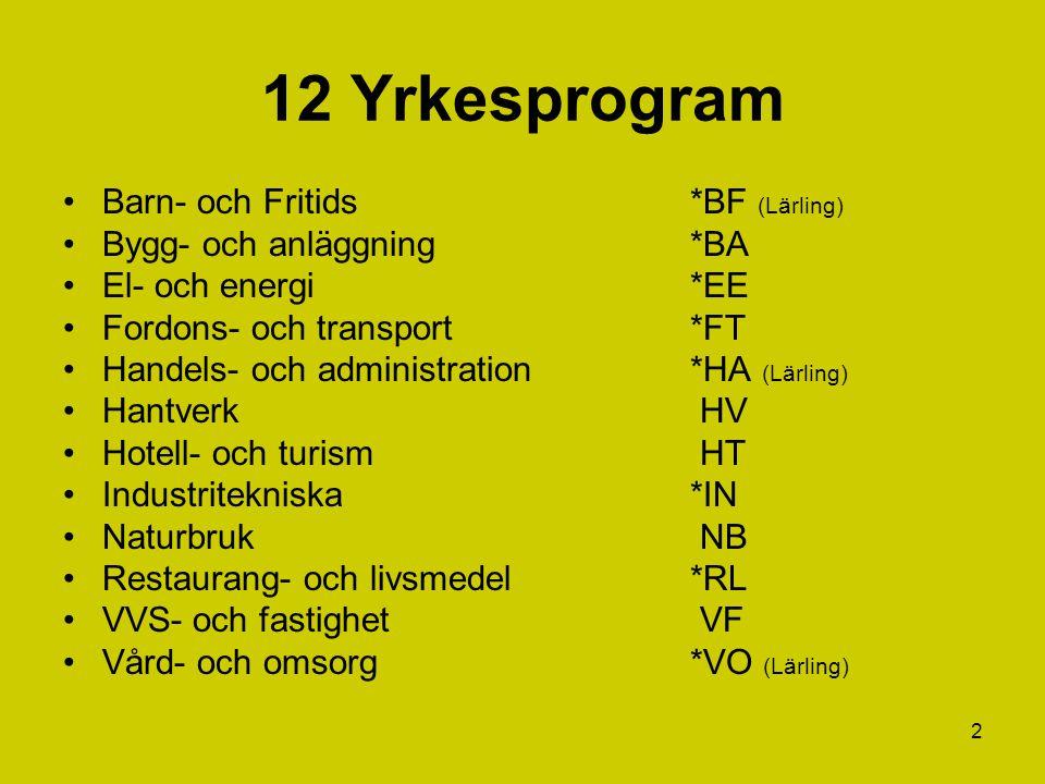 2 12 Yrkesprogram Barn- och Fritids*BF (Lärling) Bygg- och anläggning*BA El- och energi*EE Fordons- och transport*FT Handels- och administration*HA (L
