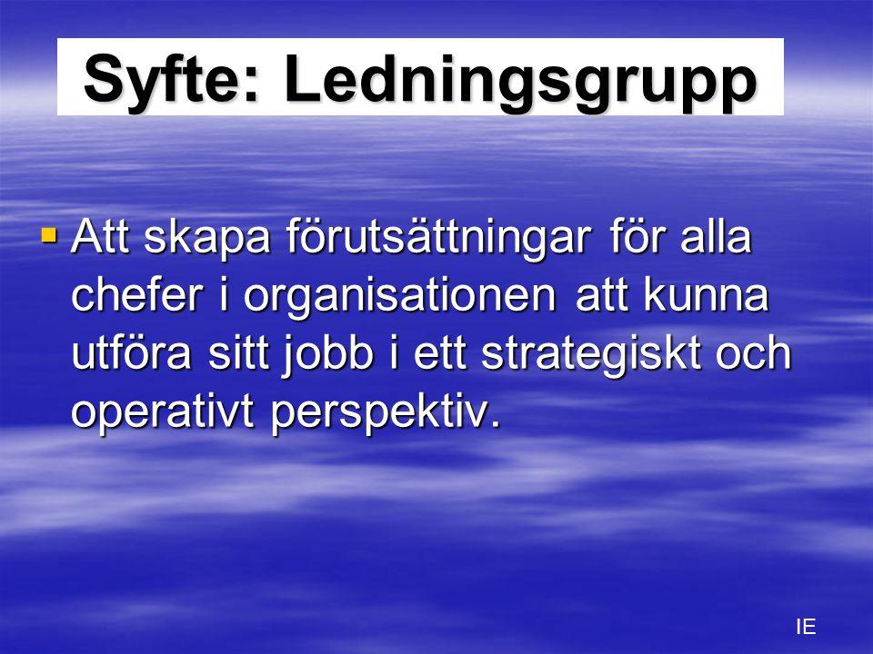 Syfte: Ledningsgrupp  Att skapa förutsättningar för alla chefer i organisationen att kunna utföra sitt jobb i ett strategiskt och operativt perspekti