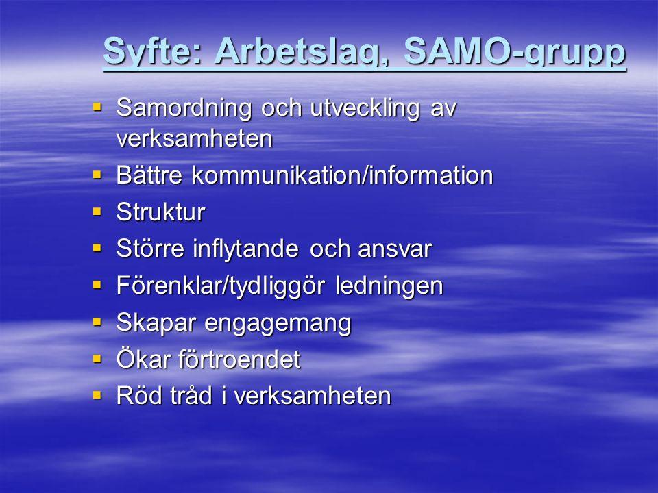 Syfte: Arbetslag, SAMO-grupp  Samordning och utveckling av verksamheten  Bättre kommunikation/information  Struktur  Större inflytande och ansvar