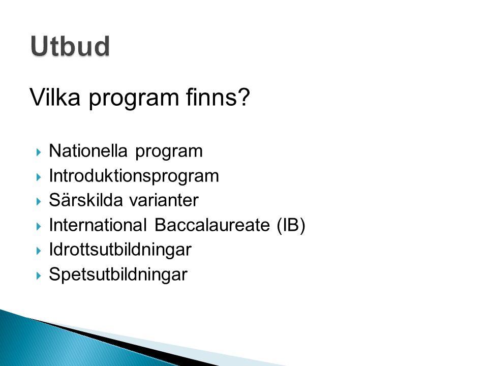 Vilka program finns?  Nationella program  Introduktionsprogram  Särskilda varianter  International Baccalaureate (IB)  Idrottsutbildningar  Spet
