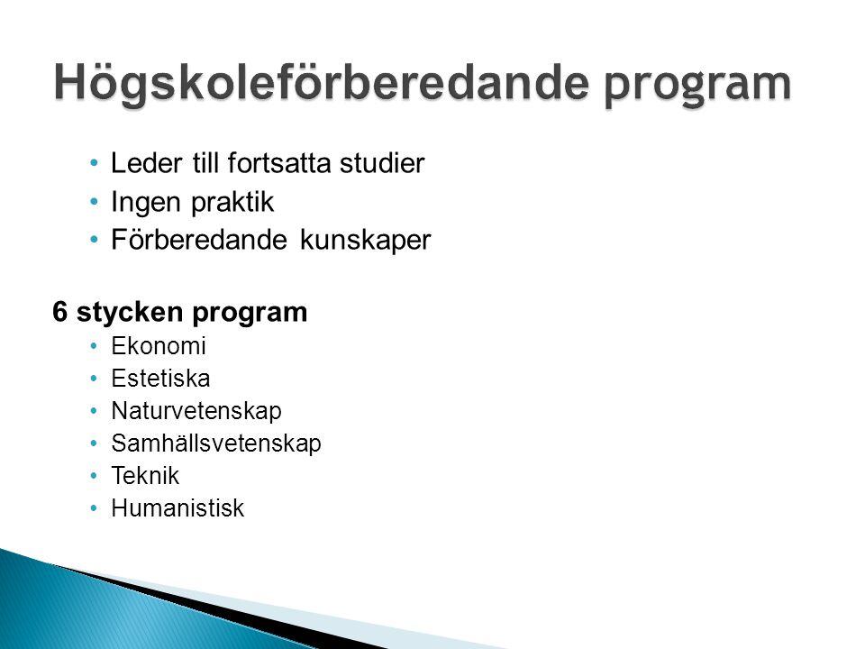 Leder till fortsatta studier Ingen praktik Förberedande kunskaper 6 stycken program Ekonomi Estetiska Naturvetenskap Samhällsvetenskap Teknik Humanist