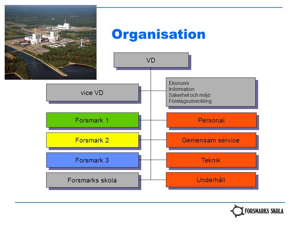 VD Ekonomi Information Säkerhet och miljö Företagsutveckling Ekonomi Information Säkerhet och miljö Företagsutveckling Gemensam service Teknik Forsmar