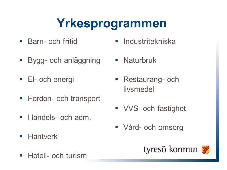 Yrkesprogrammen  Barn- och fritid  Bygg- och anläggning  El- och energi  Fordon- och transport  Handels- och adm.  Hantverk  Hotell- och turism