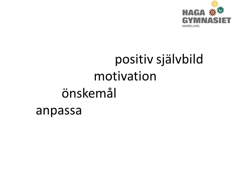 Individuellt alternativ står på 3 ben Att läsa ämnen för betyg Motivationsskapande/höjande aktiviteter, som gagnar elevens utveckling Arbetslivskunskap/Praktik