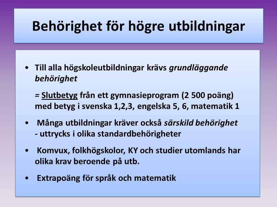 Men… Alla elever har rätt till grundläggande behörighet genom att välja till Svenska 2 och 3 Engelska 6 Vissa skolor erbjuder ett eller två av dessa ämnen i sin programfördjupning Yrkesprogrammet ger inte grundläggande behörigheter