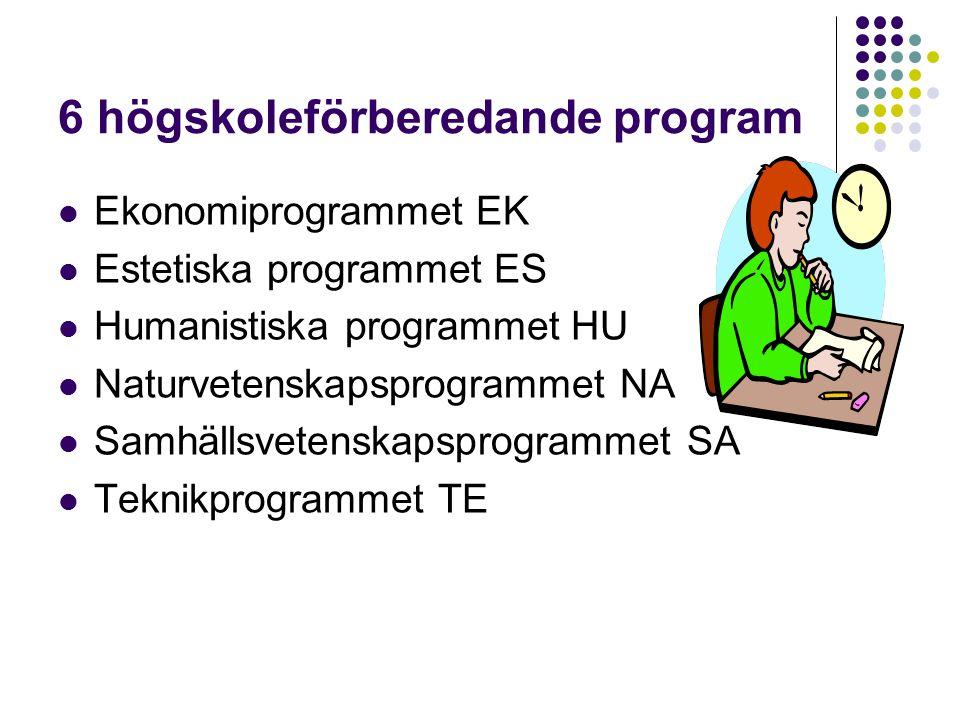 6 högskoleförberedande program Ekonomiprogrammet EK Estetiska programmet ES Humanistiska programmet HU Naturvetenskapsprogrammet NA Samhällsvetenskapsprogrammet SA Teknikprogrammet TE