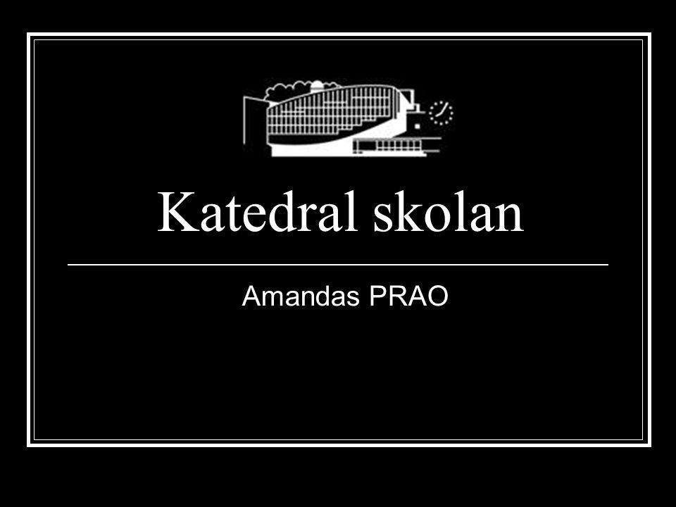 Katedral skolan Amandas PRAO