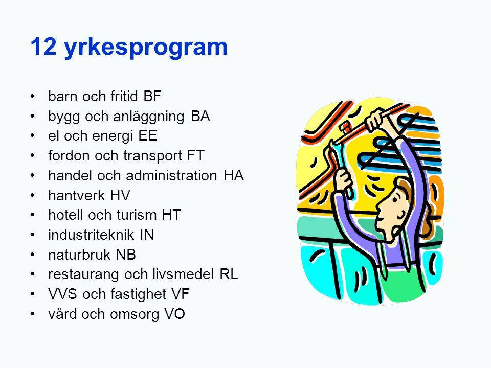 12 yrkesprogram barn och fritid BF bygg och anläggning BA el och energi EE fordon och transport FT handel och administration HA hantverk HV hotell och