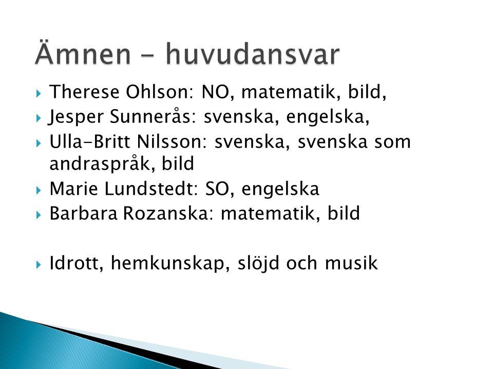  Therese Ohlson: NO, matematik, bild,  Jesper Sunnerås: svenska, engelska,  Ulla-Britt Nilsson: svenska, svenska som andraspråk, bild  Marie Lunds