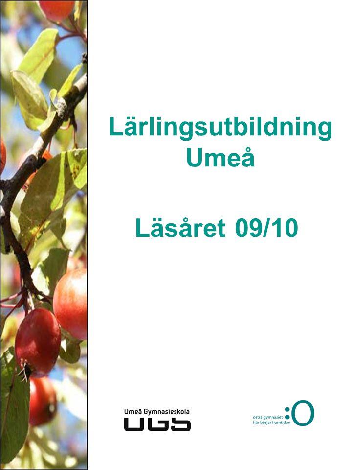 Lärlingsutbildning Umeå Läsåret 09/10