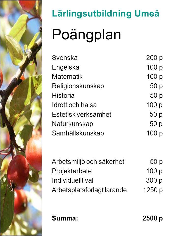 Poängplan Svenska 200 p Engelska 100 p Matematik 100 p Religionskunskap 50 p Historia 50 p Idrott och hälsa 100 p Estetisk verksamhet 50 p Naturkunska