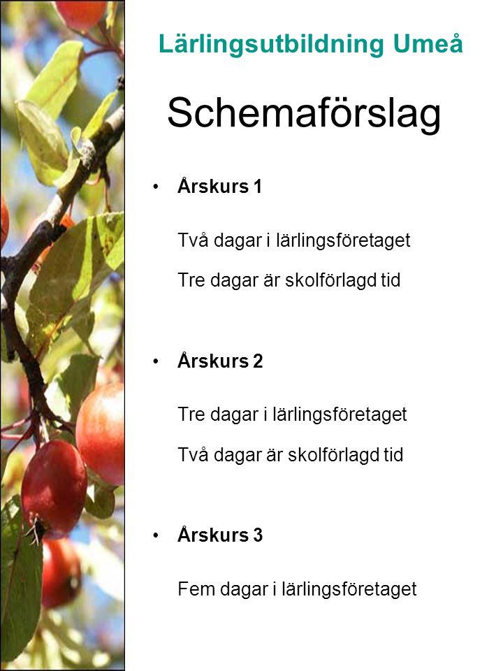 Övrigt Byte av företag under utbildningen kan vara aktuellt Lärlingen får grundläggande behörighet och slutbetyg för gymnasiestudier Gesällprov eller certifikat kan vara aktuellt för vissa yrkesgrupper Utvecklingssamtal varje termin Maria Andersson Samordnare / SYV 090-165851, 076-768 58 51 E-post: maria.a.andersson@umea.se Lärlingsutbildning Umeå