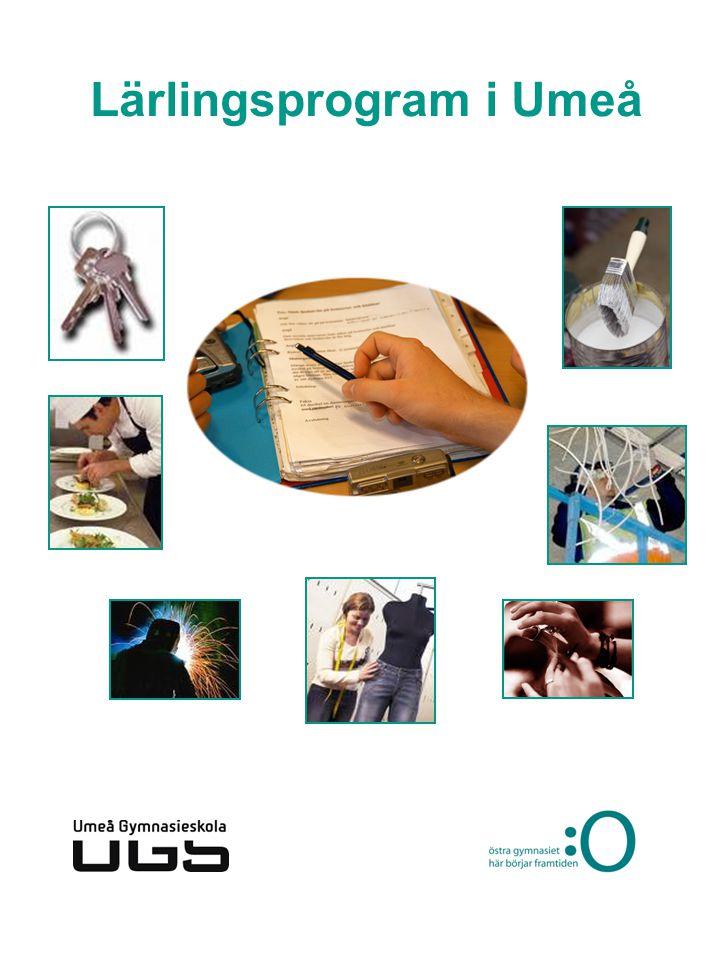 Lärlingsprogram i Umeå