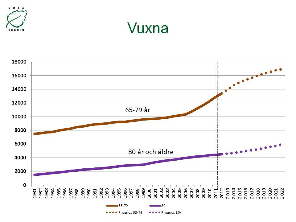 65-79 år Vuxna
