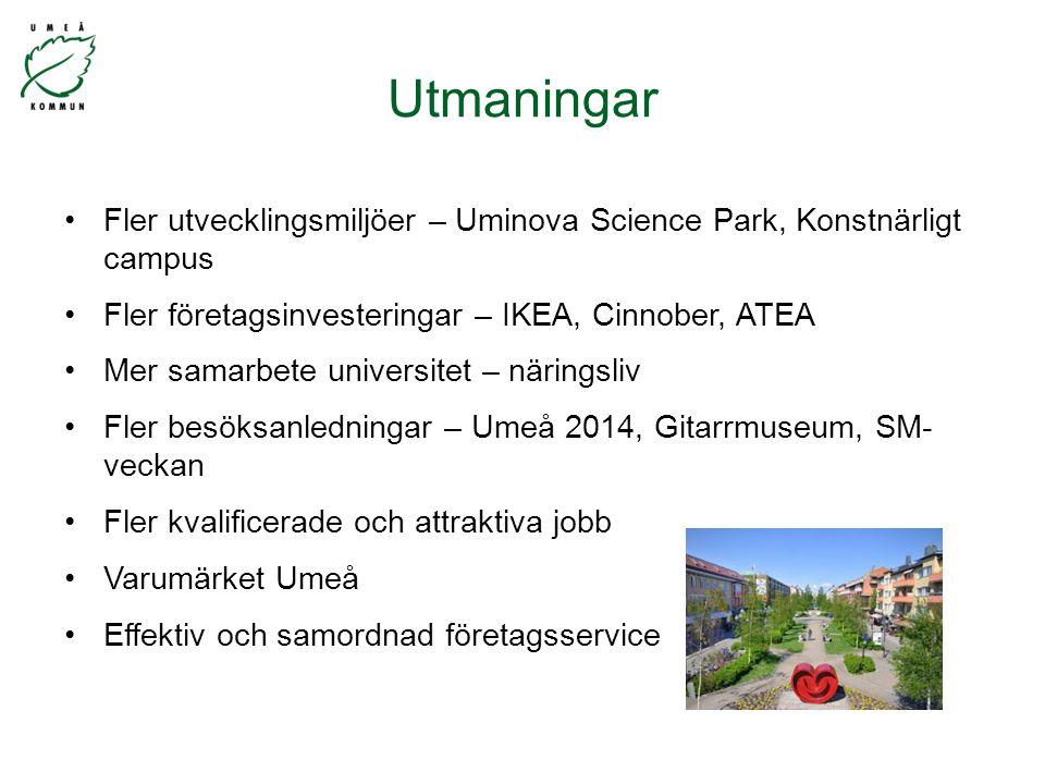 Fler utvecklingsmiljöer – Uminova Science Park, Konstnärligt campus Fler företagsinvesteringar – IKEA, Cinnober, ATEA Mer samarbete universitet – näringsliv Fler besöksanledningar – Umeå 2014, Gitarrmuseum, SM- veckan Fler kvalificerade och attraktiva jobb Varumärket Umeå Effektiv och samordnad företagsservice Utmaningar