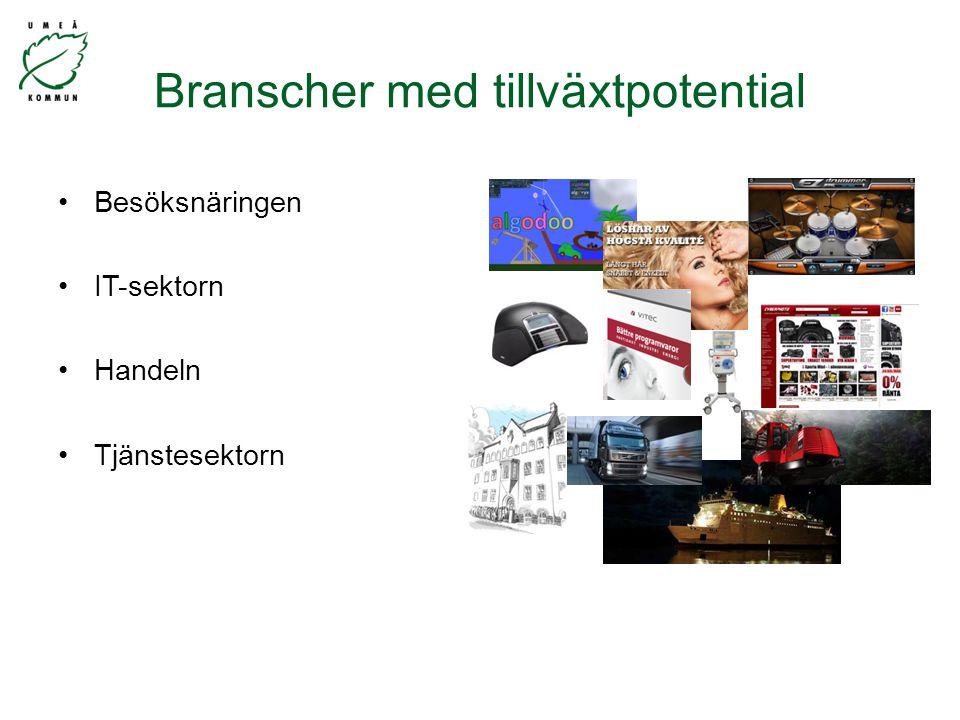 Besöksnäringen IT-sektorn Handeln Tjänstesektorn Branscher med tillväxtpotential