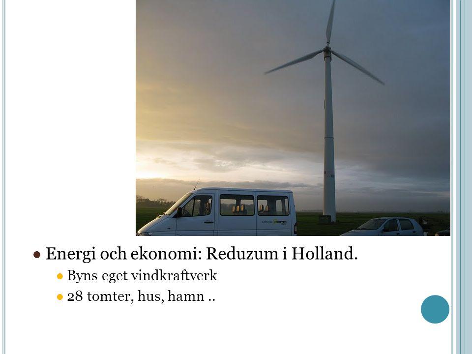 Energi och ekonomi: Reduzum i Holland. Byns eget vindkraftverk 28 tomter, hus, hamn..