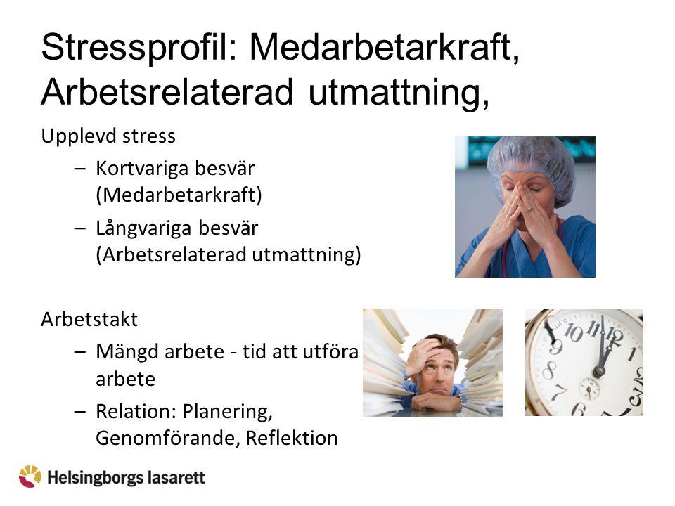 Stressprofil: Medarbetarkraft, Arbetsrelaterad utmattning, Arbetstakt Upplevd stress –Kortvariga besvär (Medarbetarkraft) –Långvariga besvär (Arbetsre