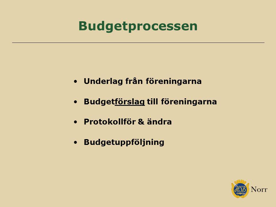 Budgetprocessen Underlag från föreningarna Budgetförslag till föreningarna Protokollför & ändra Budgetuppföljning