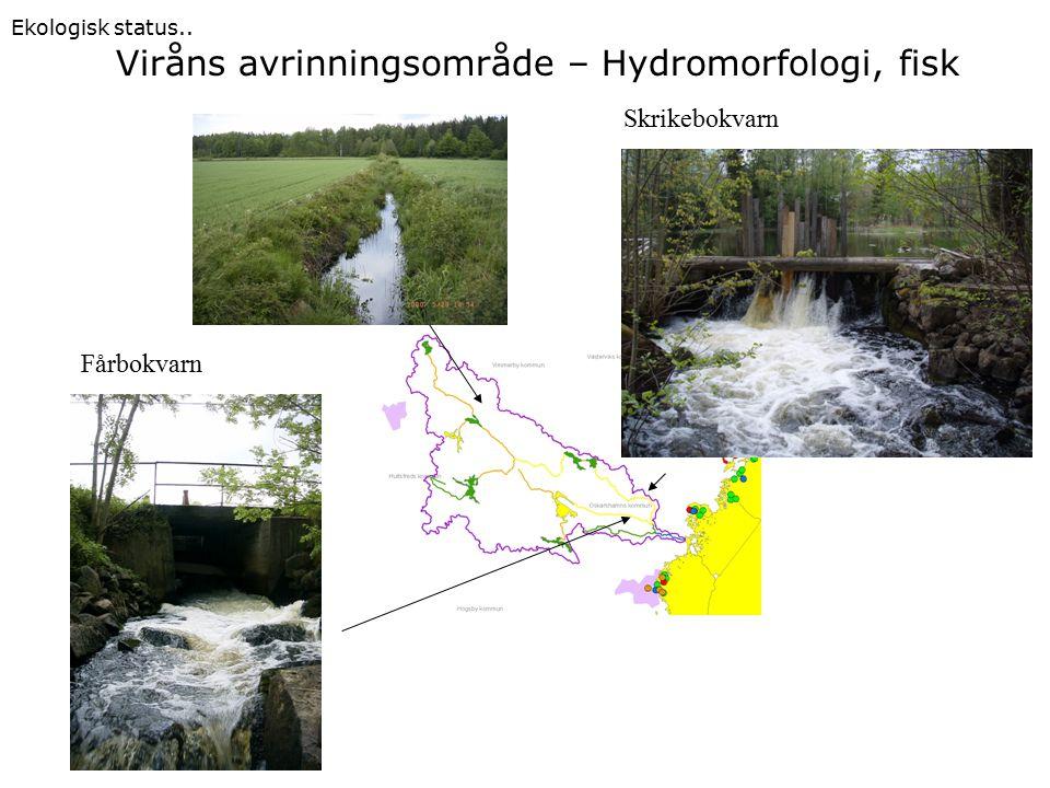 Skrikebokvarn Fårbokvarn Viråns avrinningsområde – Hydromorfologi, fisk Ekologisk status..