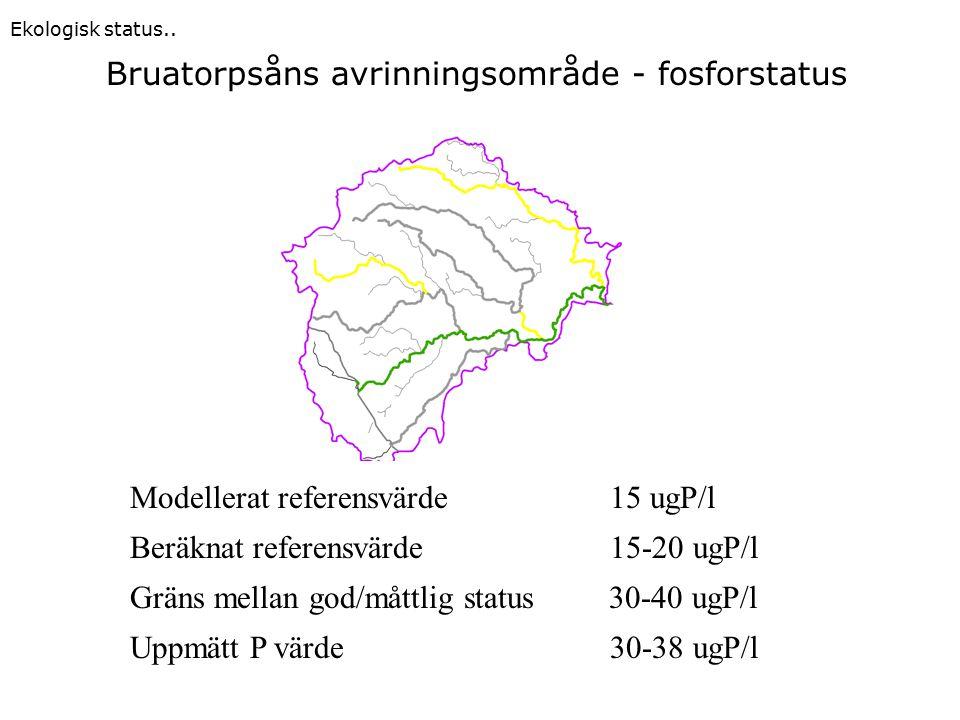 Modellerat referensvärde 15 ugP/l Beräknat referensvärde 15-20 ugP/l Gräns mellan god/måttlig status 30-40 ugP/l Uppmätt P värde 30-38 ugP/l Bruatorpsåns avrinningsområde - fosforstatus Ekologisk status..