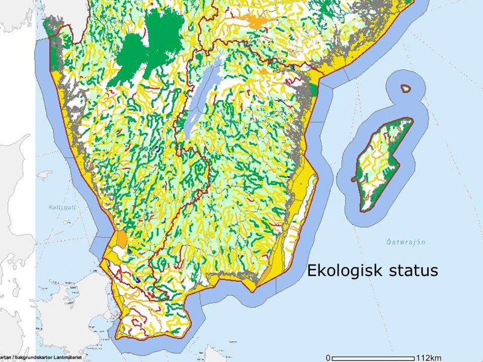 Dålig Ekologisk status
