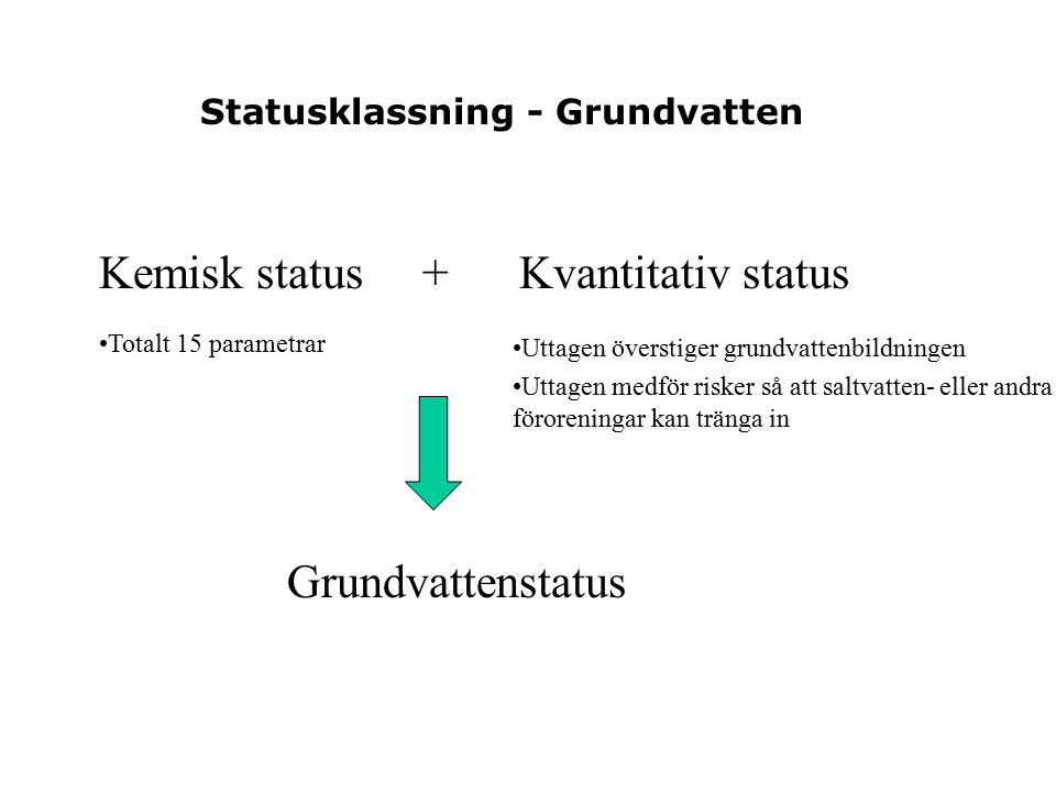 Statusklassning - Grundvatten Kemisk status + Kvantitativ status Grundvattenstatus Uttagen överstiger grundvattenbildningen Uttagen medför risker så att saltvatten- eller andra föroreningar kan tränga in Totalt 15 parametrar