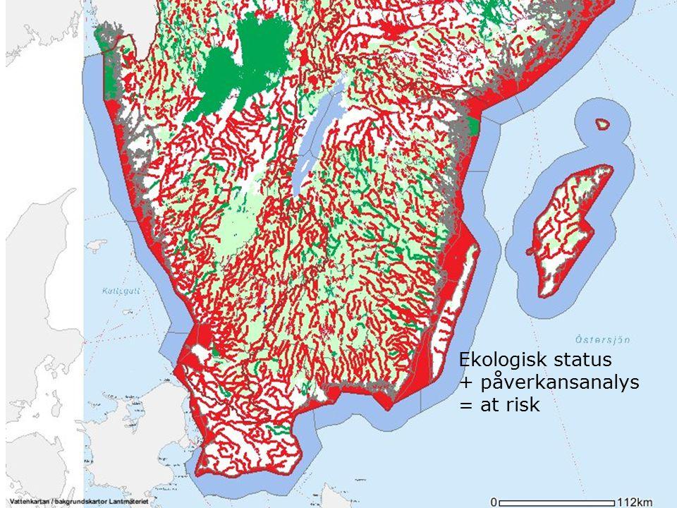Ekologisk status + påverkansanalys = at risk