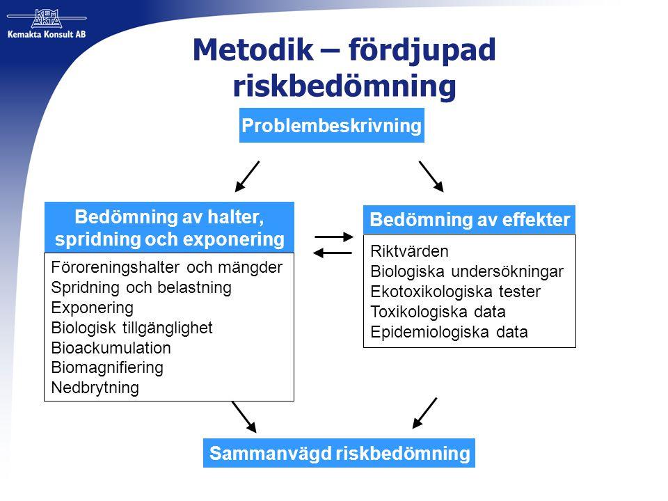 Metodik – fördjupad riskbedömning Problembeskrivning Bedömning av halter, spridning och exponering Bedömning av effekter Sammanvägd riskbedömning Föro