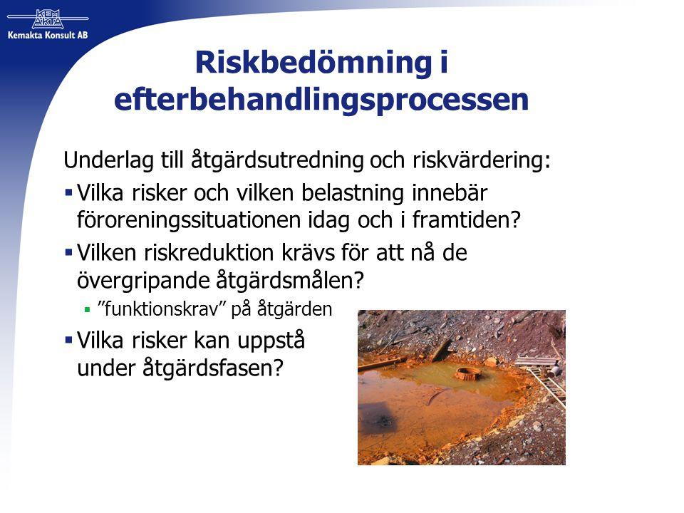 Riskbedömning i efterbehandlingsprocessen Underlag till åtgärdsutredning och riskvärdering:  Vilka risker och vilken belastning innebär föroreningssi