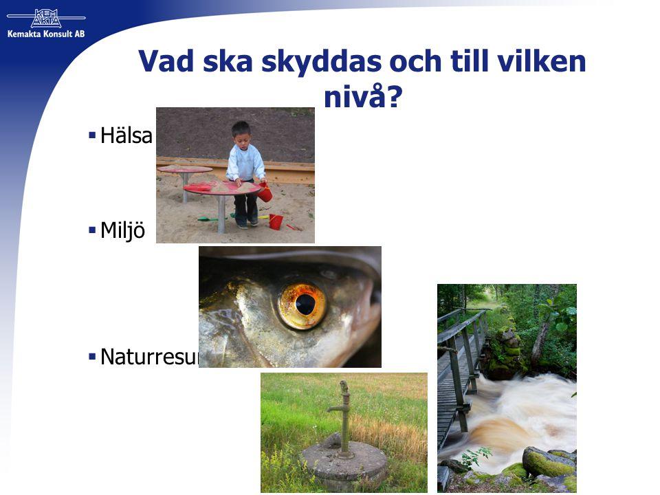 Vad ska skyddas och till vilken nivå?  Hälsa  Miljö  Naturresurser