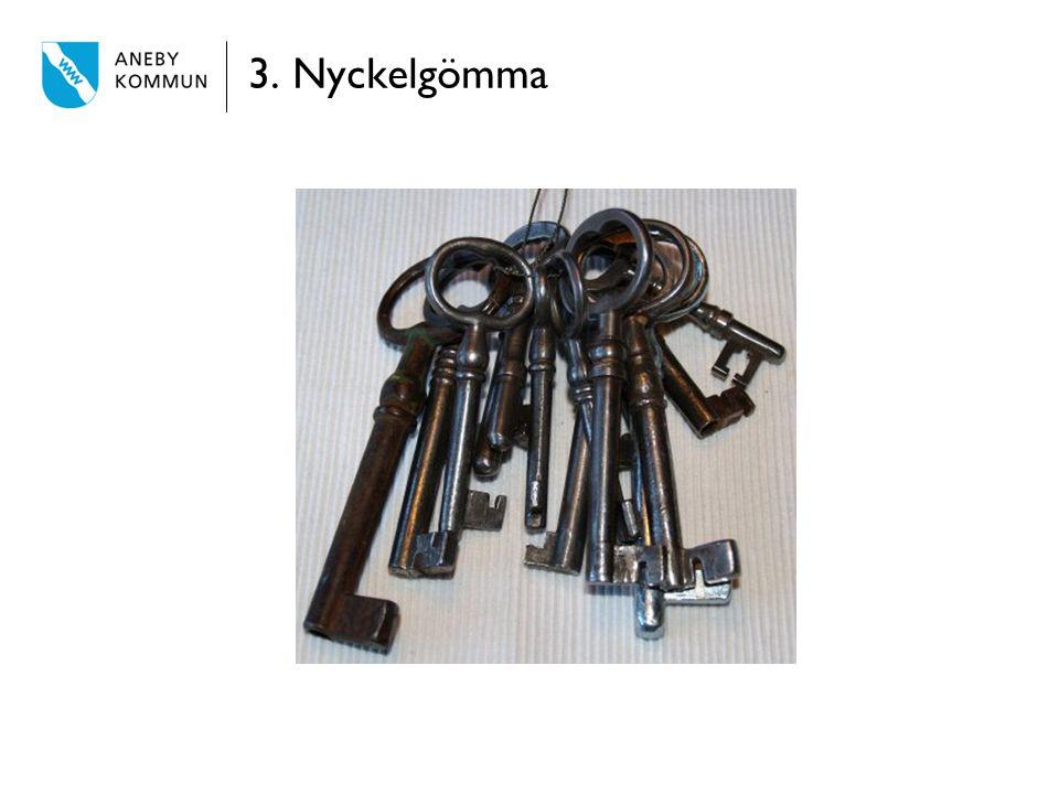 3. Nyckelgömma