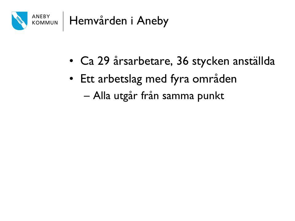 Hemvården i Aneby Ca 29 årsarbetare, 36 stycken anställda Ett arbetslag med fyra områden –Alla utgår från samma punkt