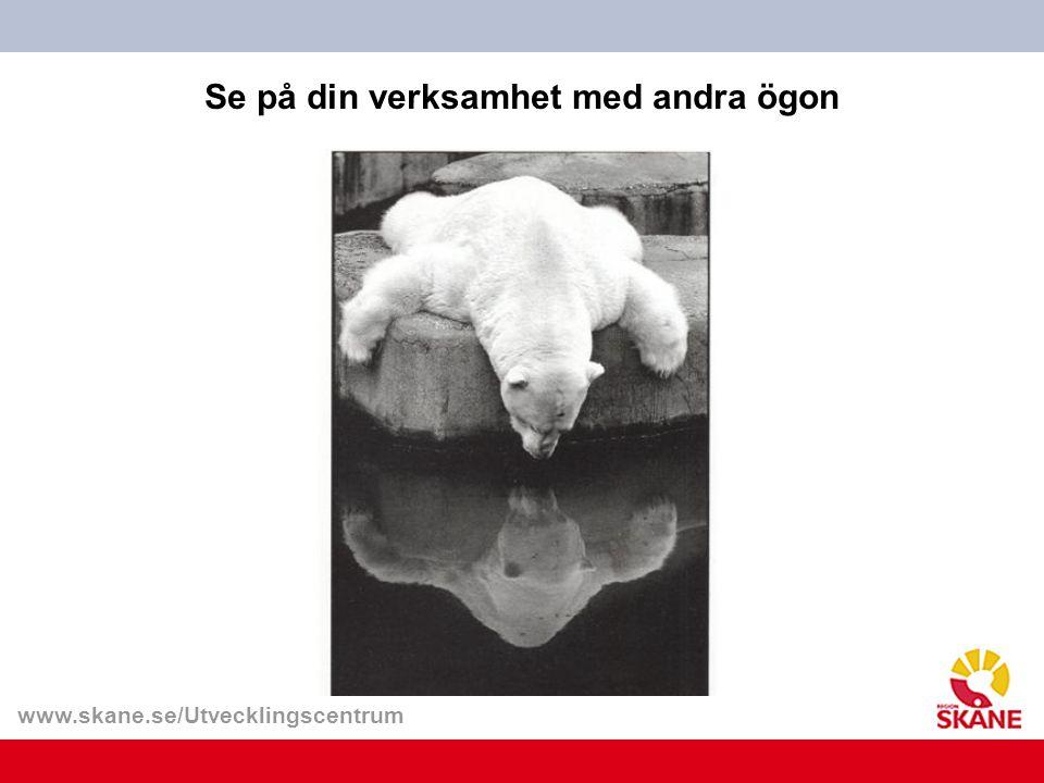 www.skane.se/Utvecklingscentrum Se på din verksamhet med andra ögon