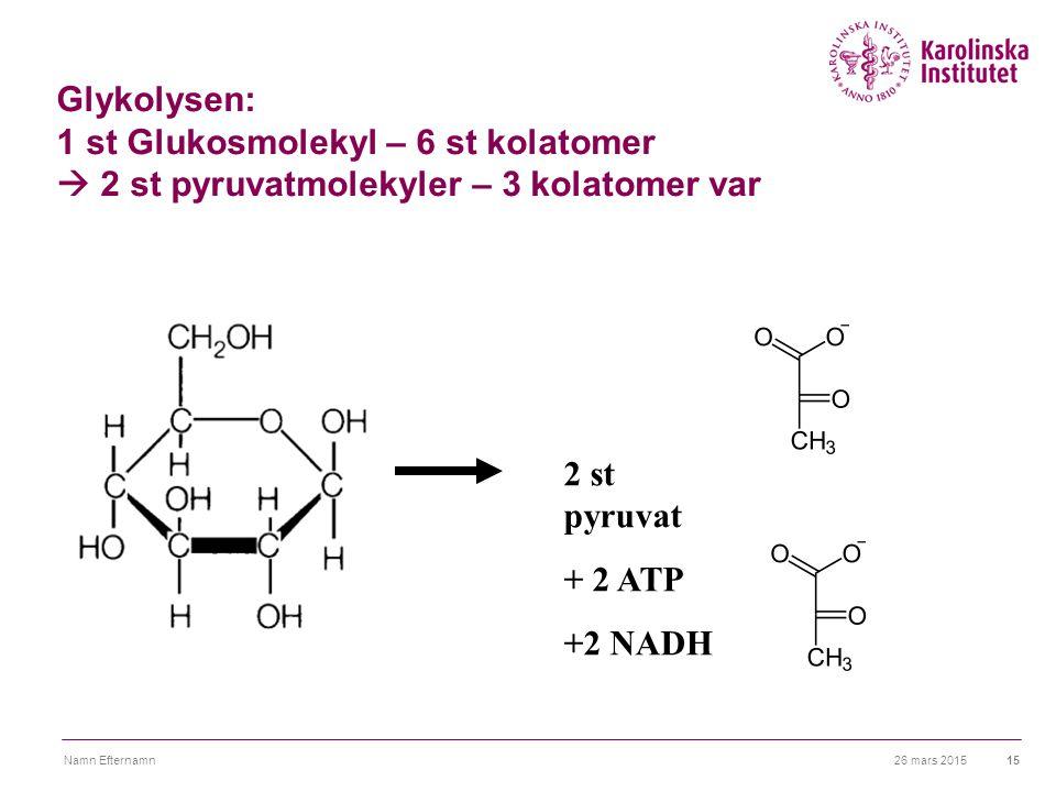 26 mars 2015Namn Efternamn15 Glykolysen: 1 st Glukosmolekyl – 6 st kolatomer  2 st pyruvatmolekyler – 3 kolatomer var 2 st pyruvat + 2 ATP +2 NADH