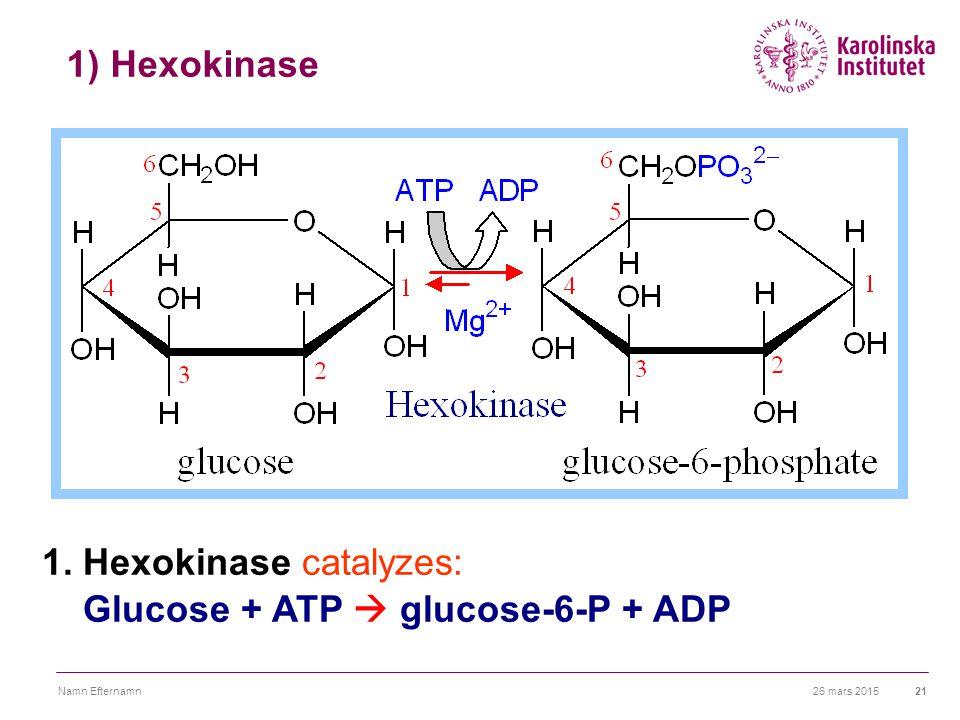 26 mars 2015Namn Efternamn21 1) Hexokinase 1. Hexokinase catalyzes: Glucose + ATP  glucose-6-P + ADP