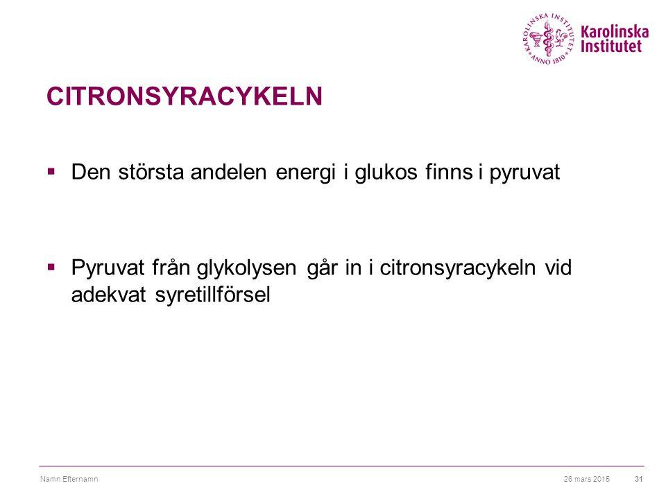 26 mars 2015Namn Efternamn31 CITRONSYRACYKELN  Den största andelen energi i glukos finns i pyruvat  Pyruvat från glykolysen går in i citronsyracykel
