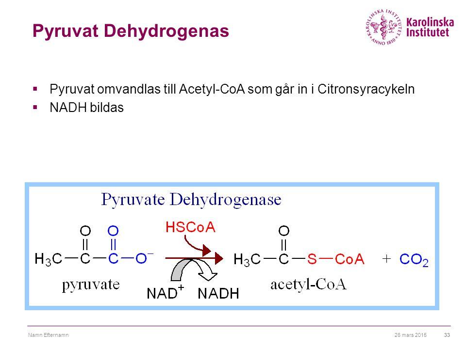 26 mars 2015Namn Efternamn33 Pyruvat Dehydrogenas  Pyruvat omvandlas till Acetyl-CoA som går in i Citronsyracykeln  NADH bildas