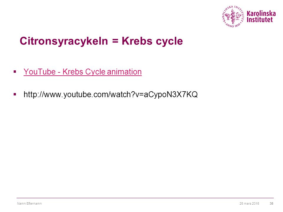 26 mars 2015Namn Efternamn38 Citronsyracykeln = Krebs cycle  YouTube - Krebs Cycle animation YouTube - Krebs Cycle animation  http://www.youtube.com